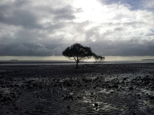 Sarina East Coast Australia