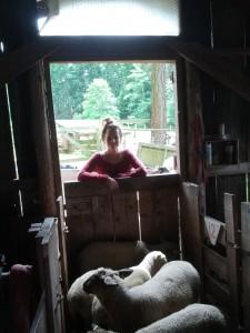 auf der Campbell-Farm