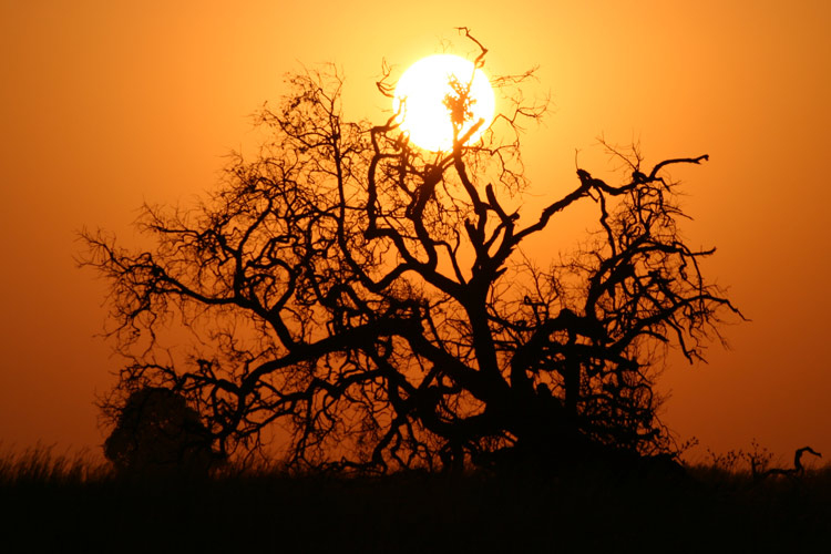Südafrika Sonnenaufgang