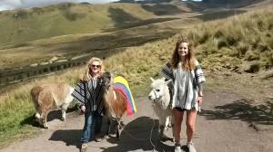 Chicas con Alpacas