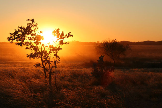 Sonnenaufgang im Outback