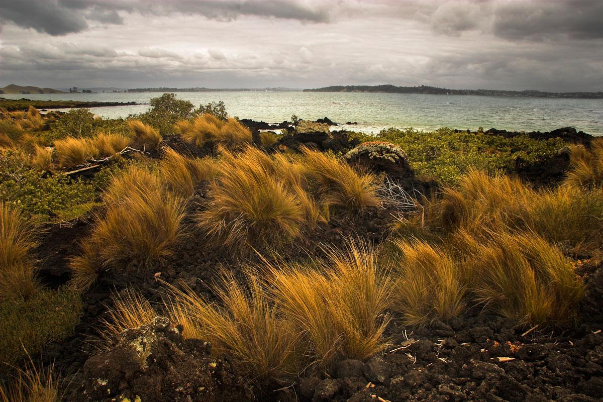 Hauraki Gulf von Rangitoto Island