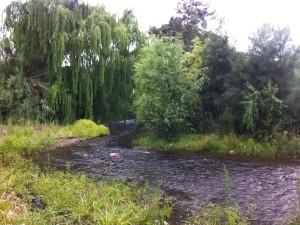 Märchenhafter Hunter River im gleichnamigen Hunter Valley