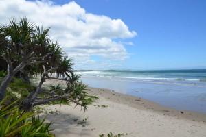Der Strand vor dem Surfcamp: Arrawarra Beach