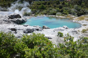 Der magische Blue Pool in Te Puia, Rotorua