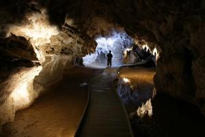 Kilometer lange Höhlen durchziehen die Region um Waitomo