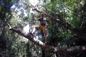 Wanderung am Orongorongo River