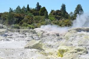 Whakarewarewa, Te Puia, Rotorua