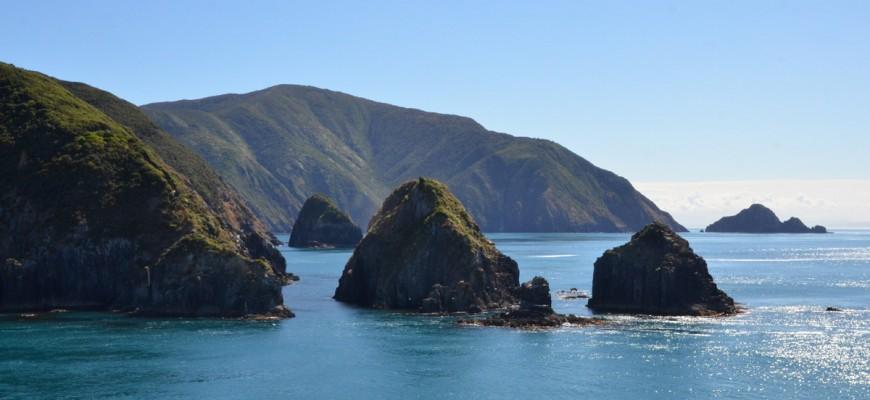 Die wunderschönen Buchten und Inseln der Marlborough Sounds