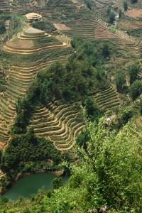 Unendlich viele Ebenen von Reisterrassen