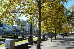 SB_MelbourneCBD_-(46)