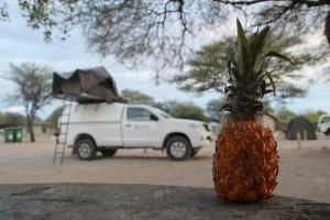 TravelWorks-Namibia-Ananas