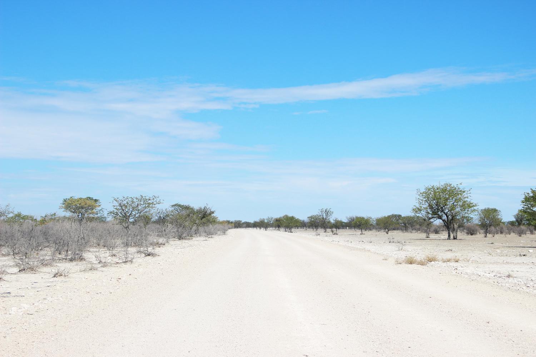 TravelWorks-Namibia-Etosha