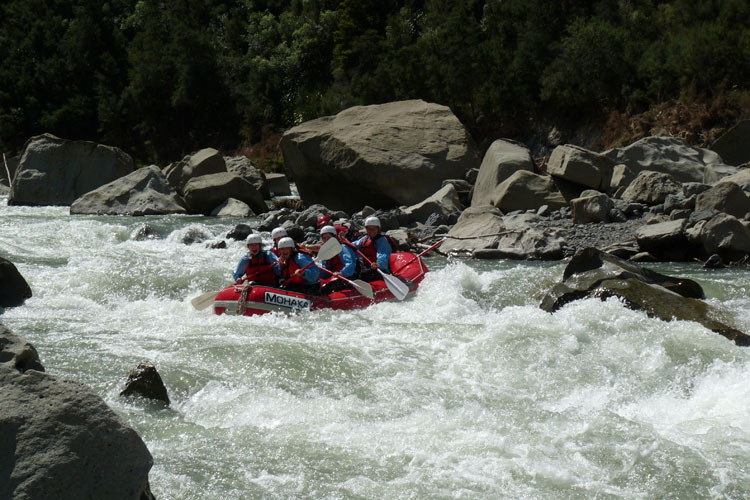 nz_hs_havelock-north_rafting