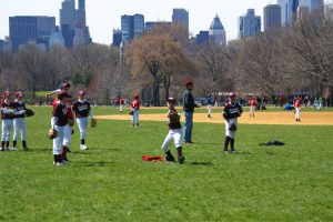 New-York-Baseball