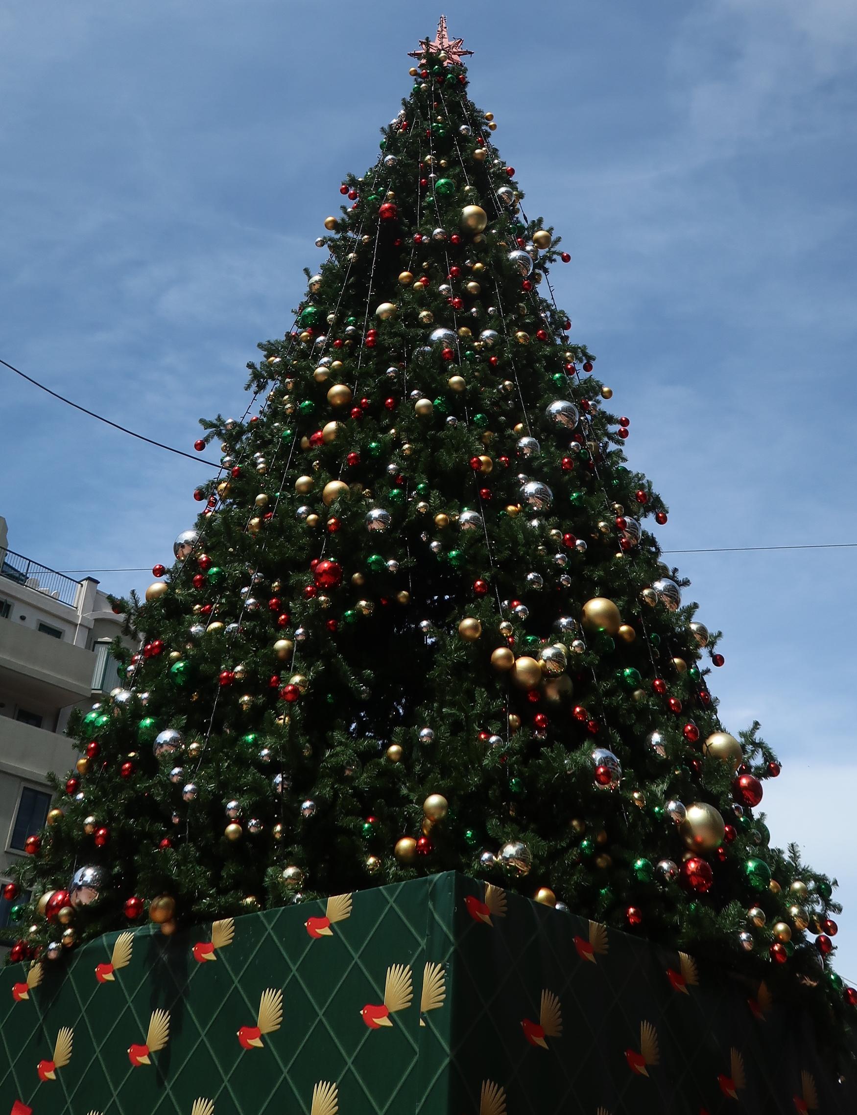 Weihnachten mal ganz anders! - Entdecker Blog
