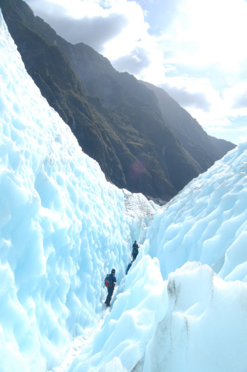 Fox Glacier in Neuseeland