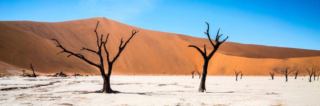 Unternimm an deinen freien Wochenenden Ausflüge mit anderen Volontären und entdecke atemberaubende Naturschauspiele, wie die Namib-Wüste.