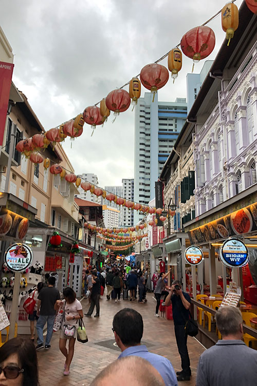 nz-hs-tpg-Ausreise-Jan-2019-Ori-Singapur--(6)