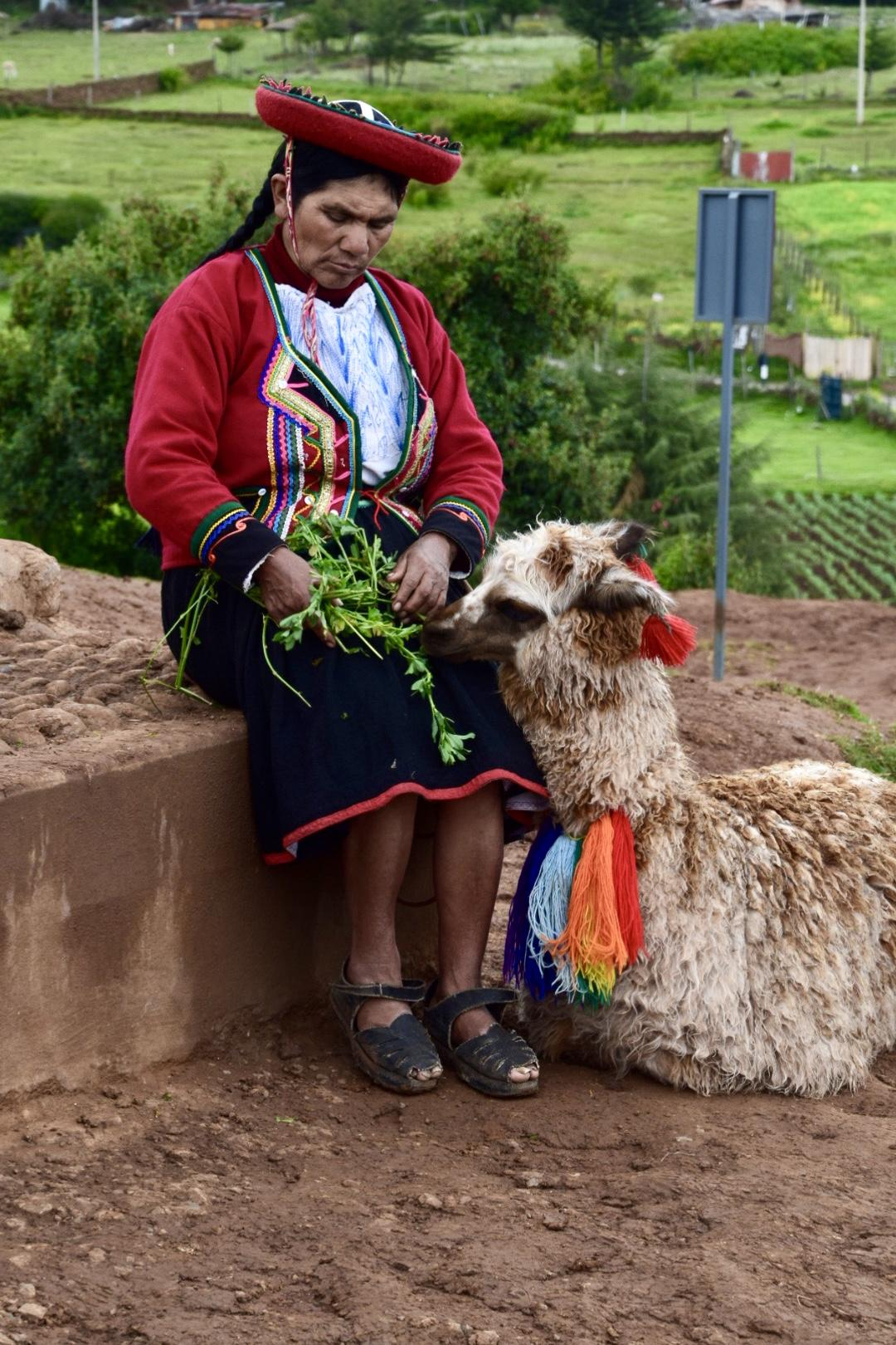 Frau mit Alpaka.