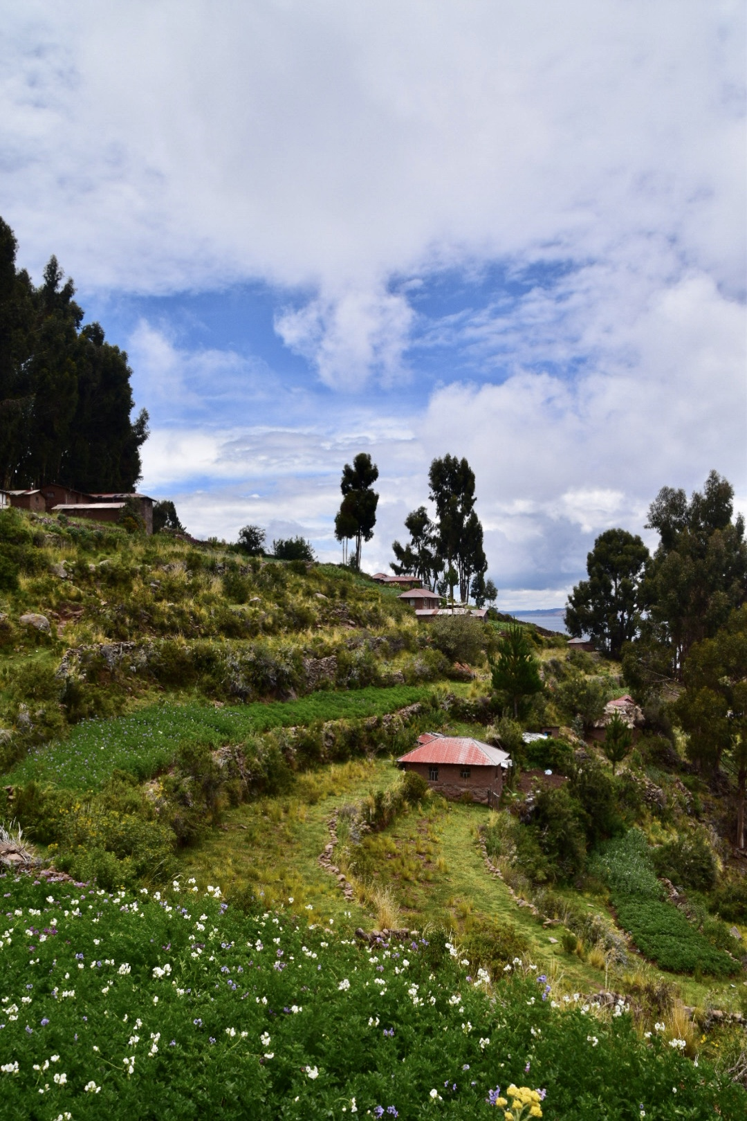 Die grüne Insel Taquile.